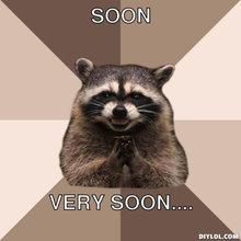 resized_evil-plotting-raccoon-meme-generator-soon-very-soon-fcff44[1].jpg